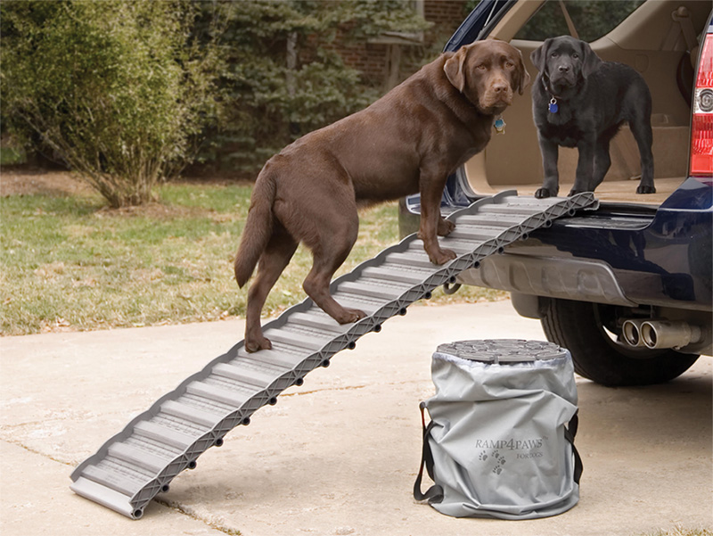 Homemade dog ramp for car