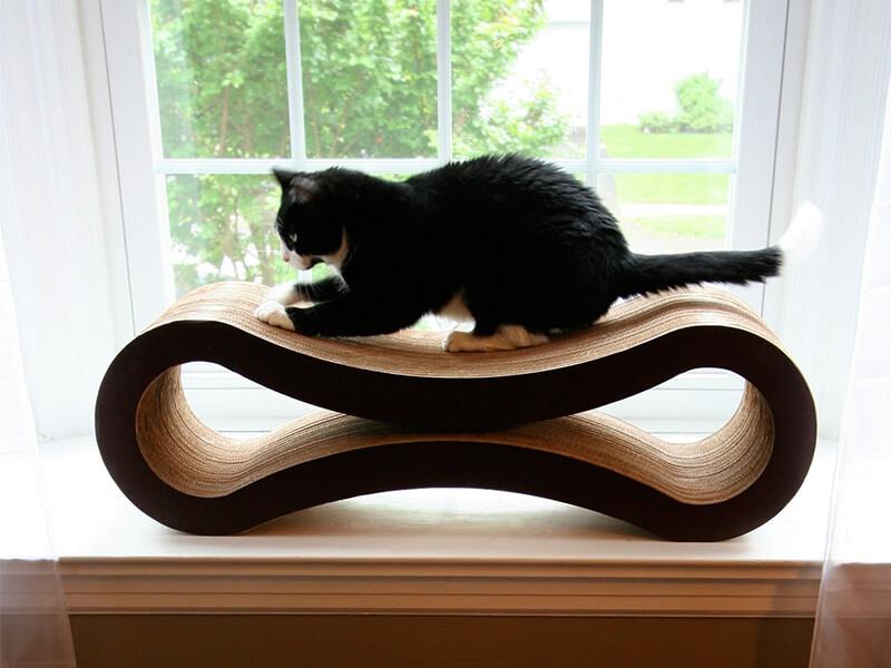 Top 10 Best Scratching Pads For Cats of 2021 Review