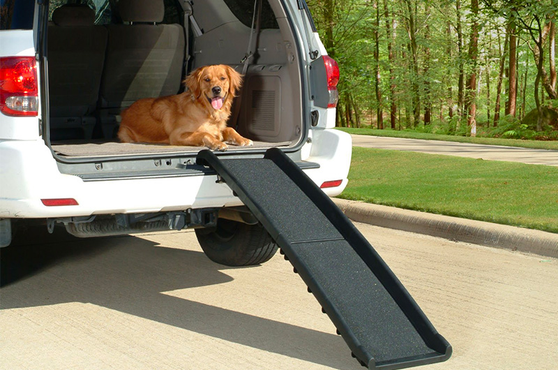 The Best Vehicle Ramps for Dogs of 2018