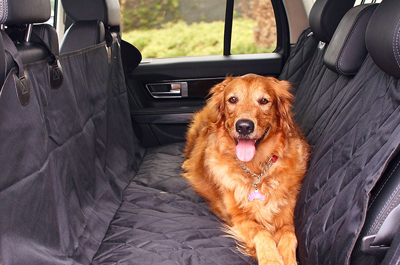 The Best Non Slip Dog Car Mat of 2019