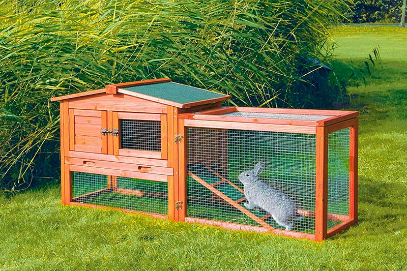 Top 10 Best Outdoor Rabbit Hutches in 2018 Reviews