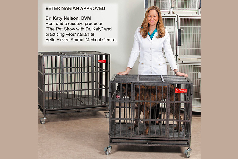 Top 10 Most Attractive Dog Crate in 2018 Reviews