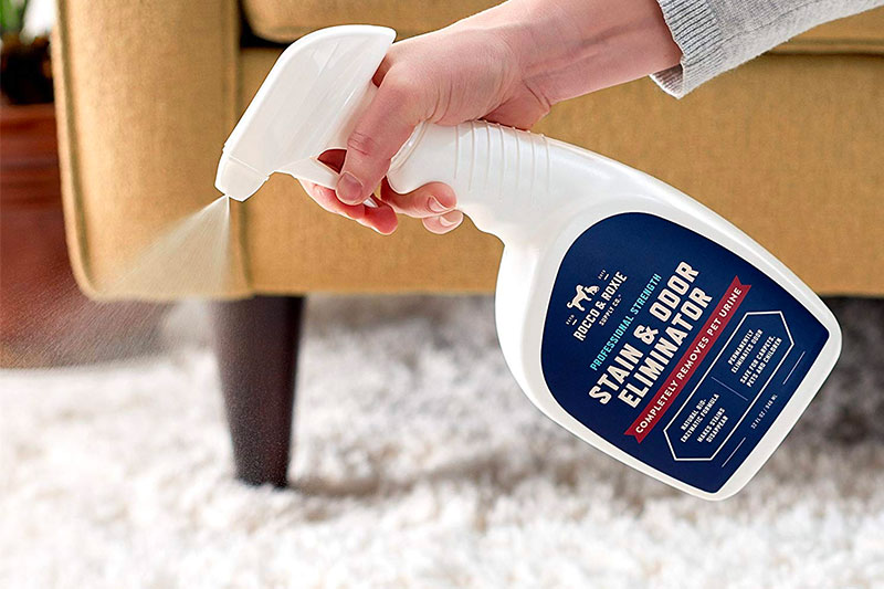 Top 10 Best Pet Odor Eliminators of 2019 Review