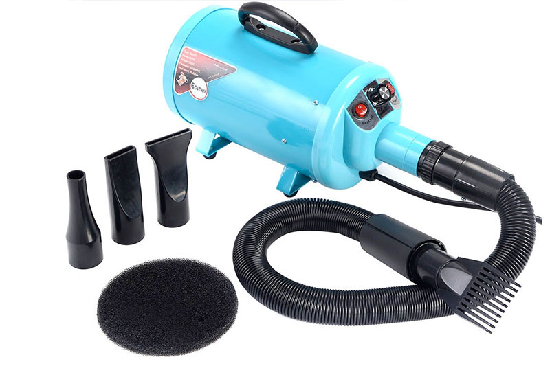 The 10 Professional Dog Hair Dryers of 2020 Review