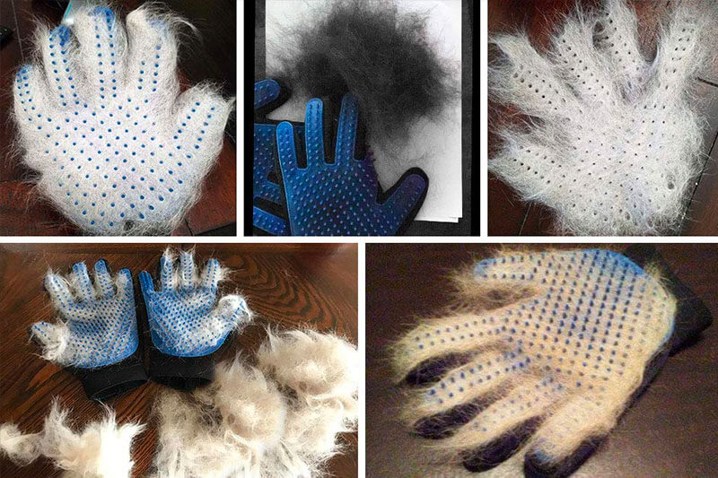 The 10 Best Pet Hair Remover Gloves of 2021 Review