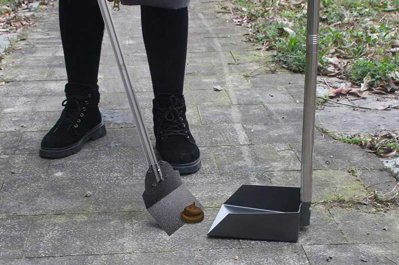 The Best Dog Poop Scooper for Grass of 2019