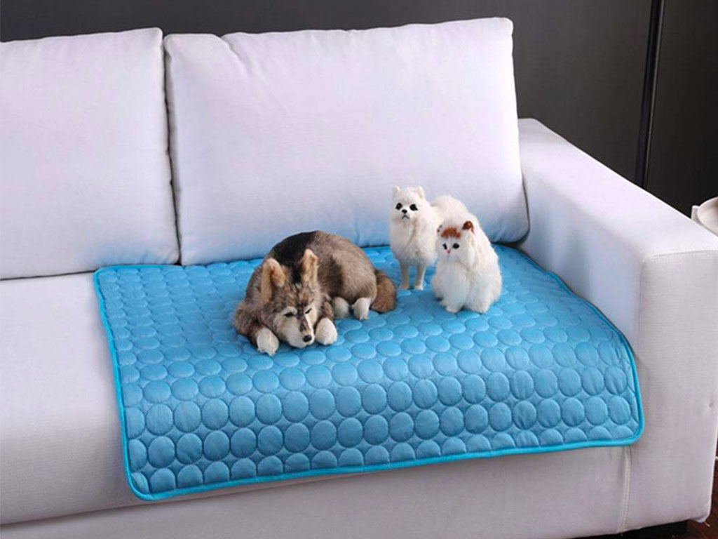 Top 10 Best Cooling Pads for Dogs of 2021 Review