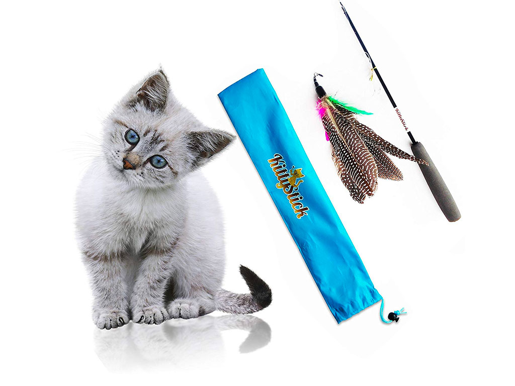 Top 10 Best Feathered Cat Toys of 2019 Review