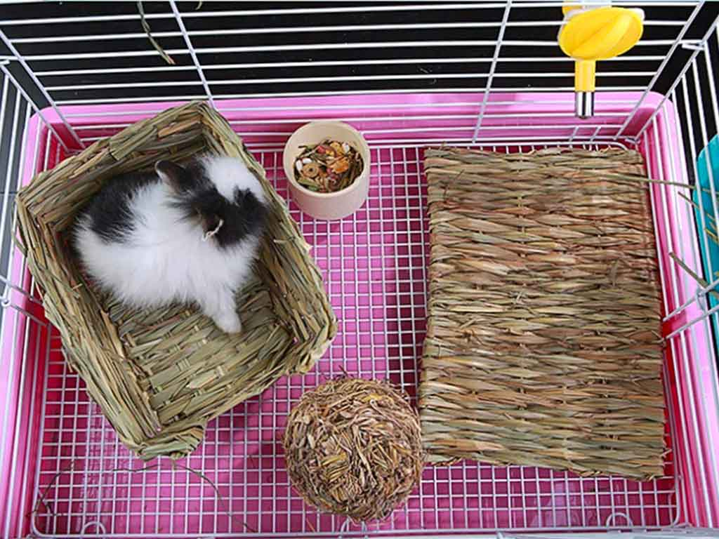 Top 10 Best Grass Mat for Bunny of 2021 Review