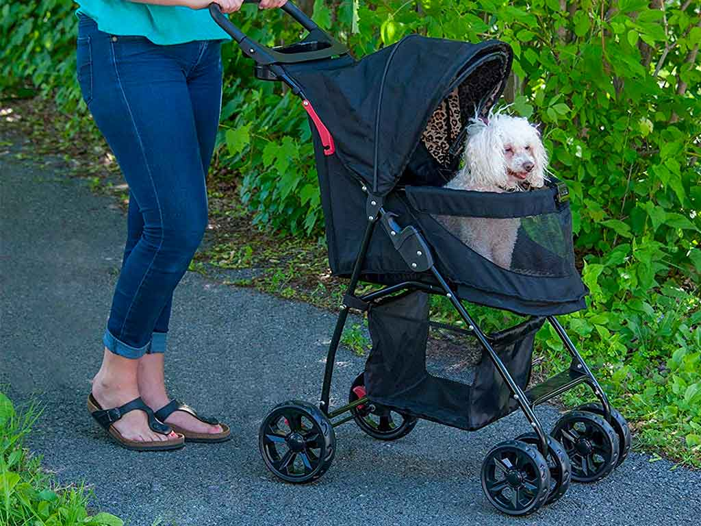 Top 10 Best Pet Strollers for Small Dogs Under 99 of 2021 Review