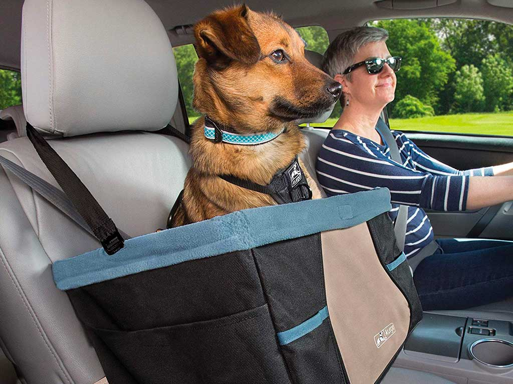 Top 10 Best Dog Car Seat of 2020 Review
