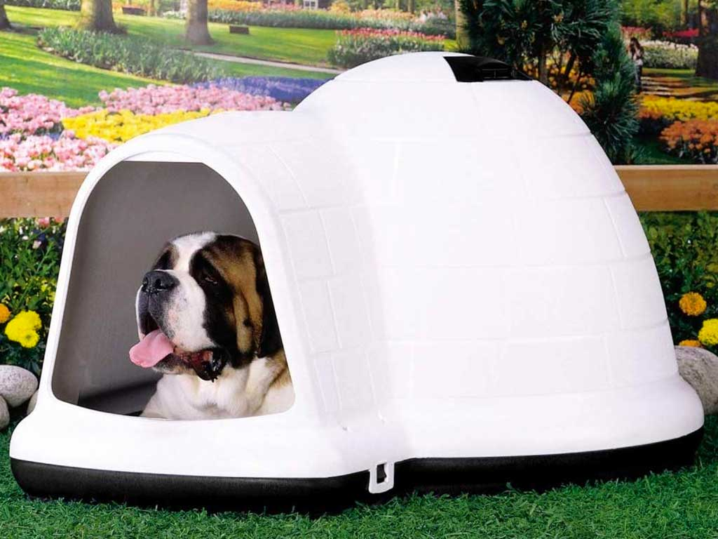 Top 10 Best Dog Igloo of 2021 Review