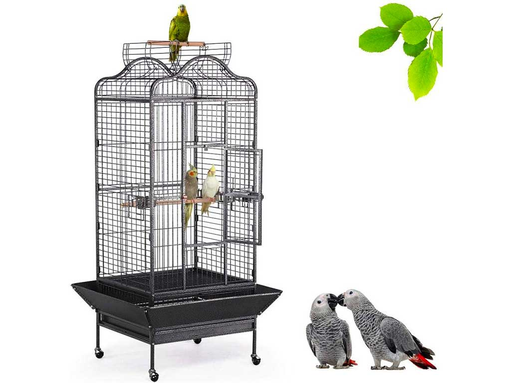 Top 10 Best Bird Cage of 2019 Review