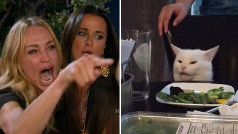 """The Origin of the """"Woman Yelling at Cat"""" Meme that Goes Viral"""