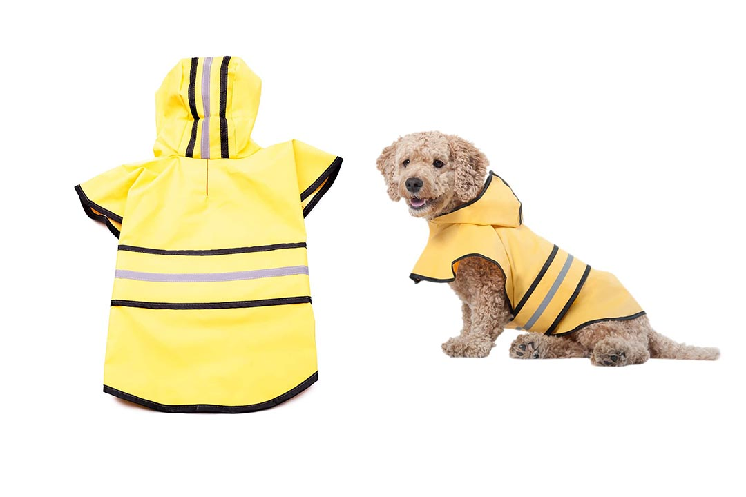 Fashion Pet Dog Raincoat