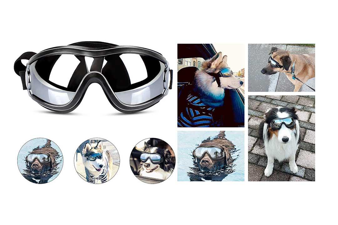 PEDOMUS Dog Sunglasses