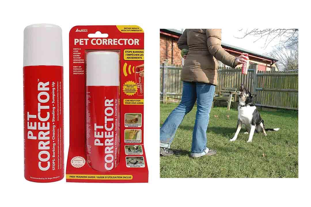 The Company of Animals Pet Corrector