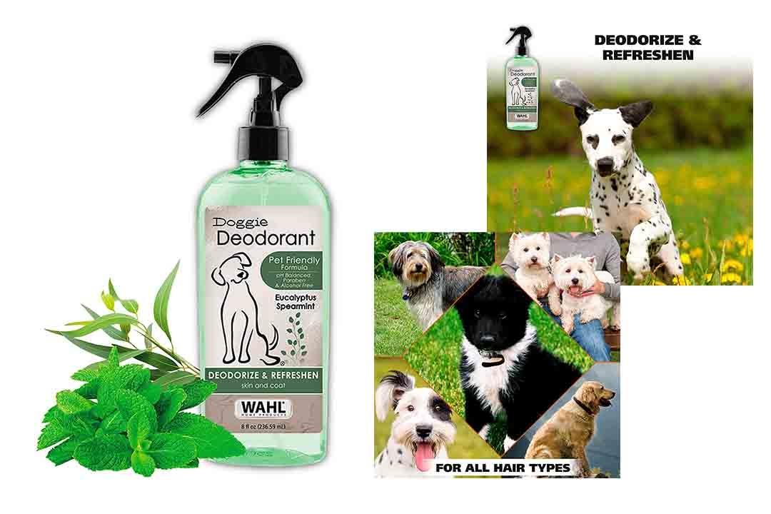 WAHL Deodorizing & Refreshing Pet Deodorant