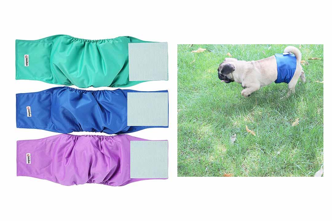 Wegreeco Washable Male Dog Diapers