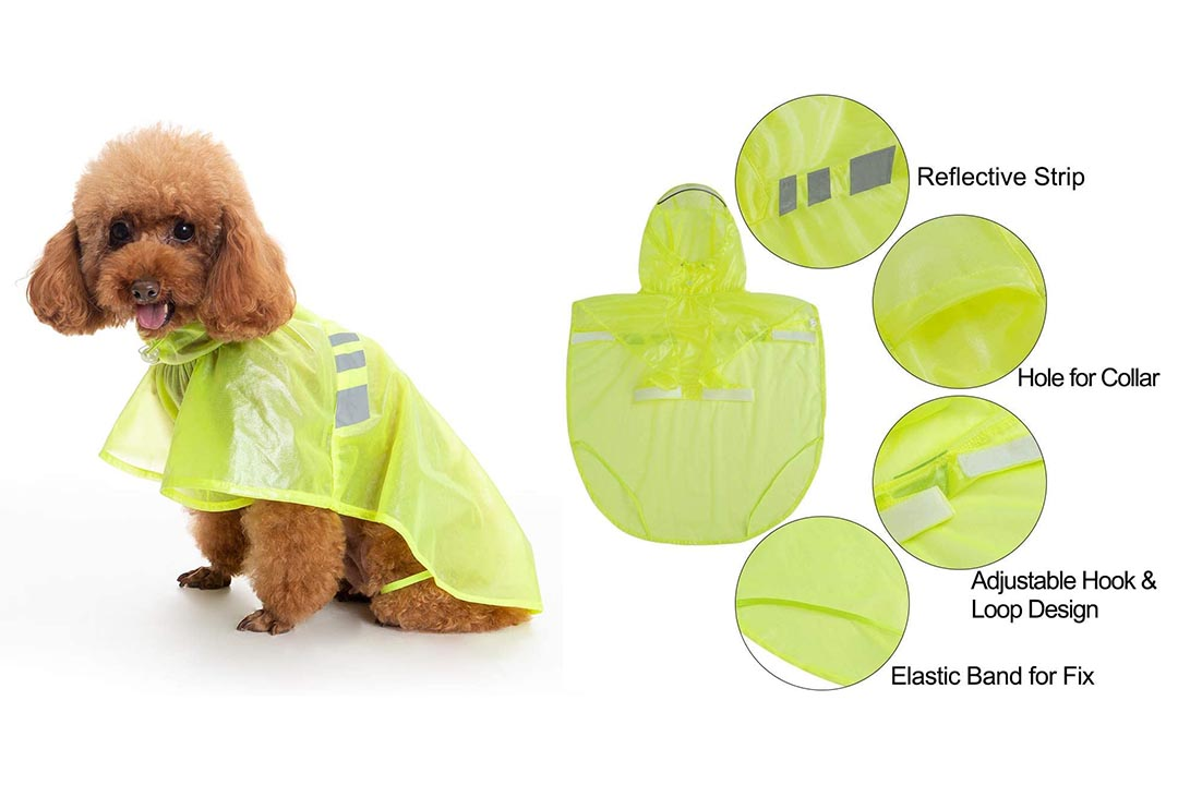 BINGPET Dog Raincoat for Small to Large Dogs