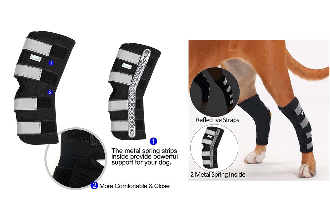 IN HAND Dog Rear Leg Hock Brace