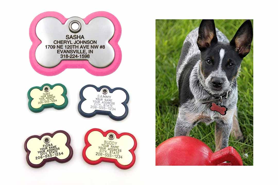 LuckyPet Pet ID Tag