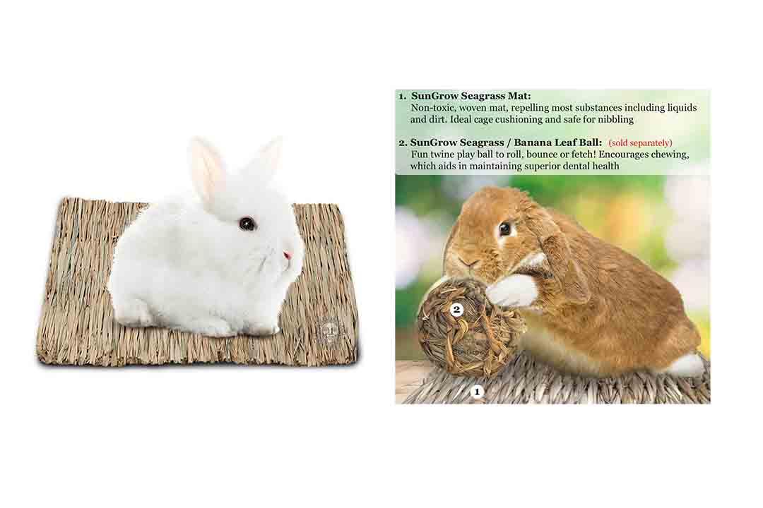 Seagrass Rabbit Mat