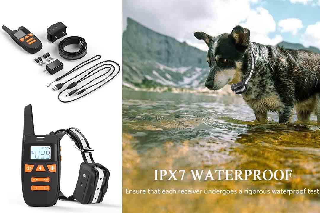 Teaker Dog Training Collar