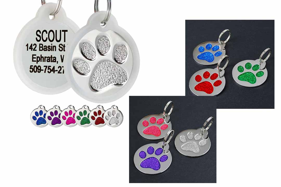 GoTags Paw Print Route Stainless Steel Pet ID Tag