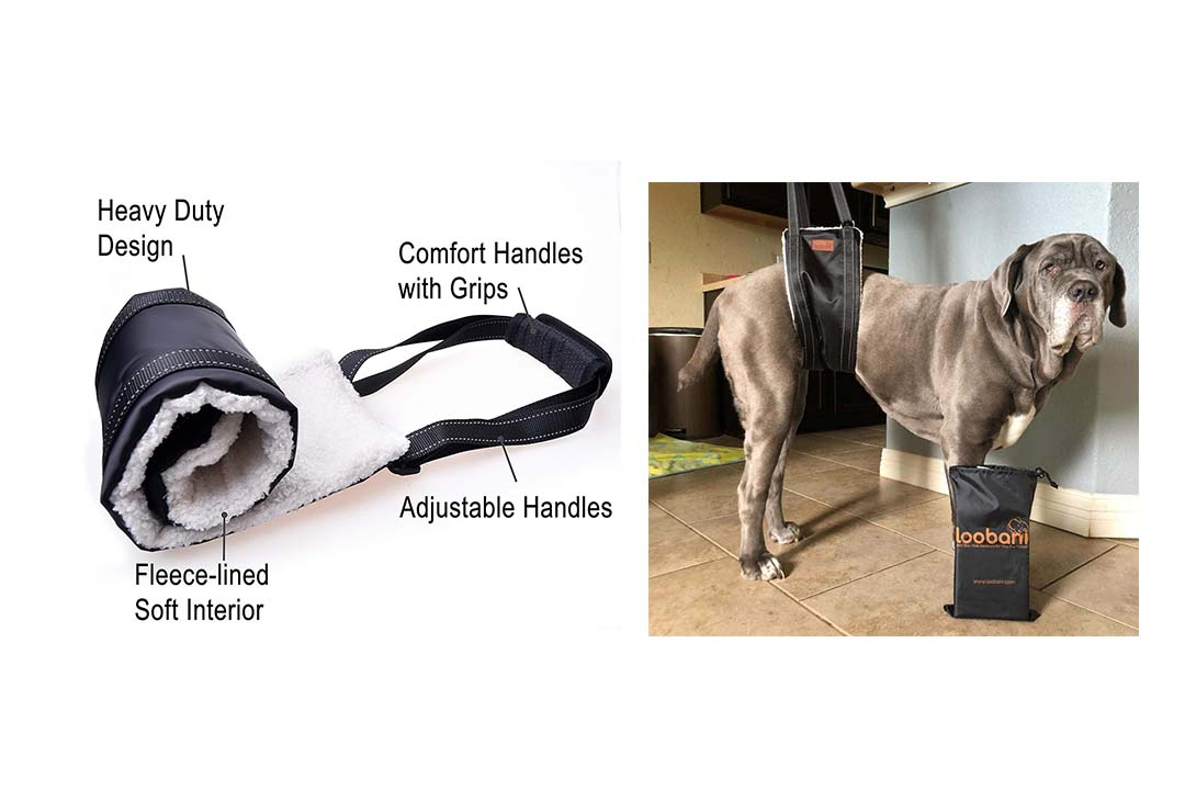 LOOBANI Portable Dog Sling