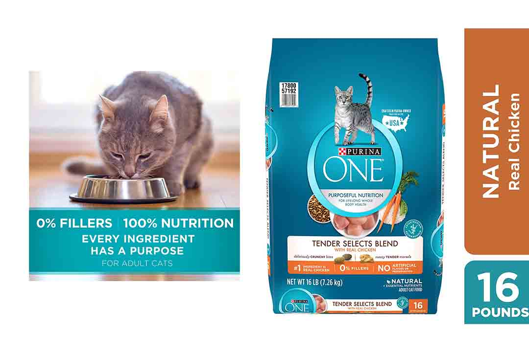 Purina ONE Tender