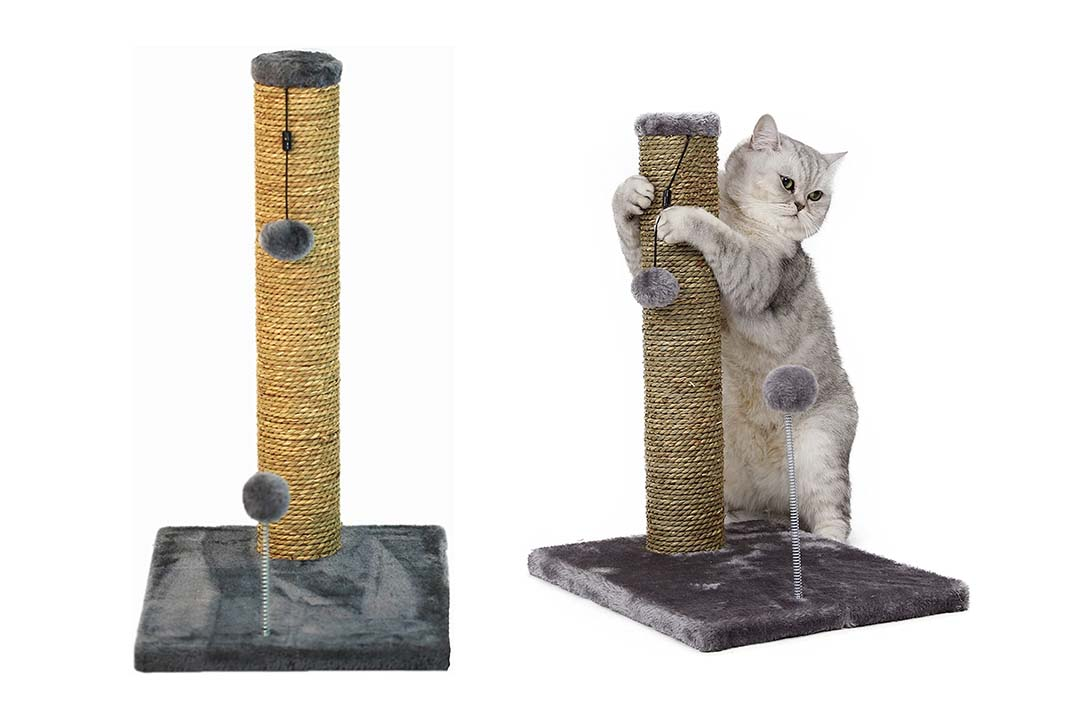 Cat Craft Seagrass Scratching Post with Sprin