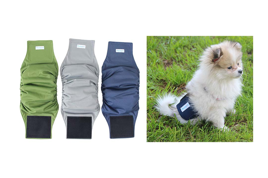 Paw Legend Washable Dog Belly Wrap Diapers