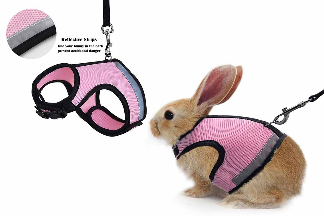 ATAILOVE Rabbit Harness
