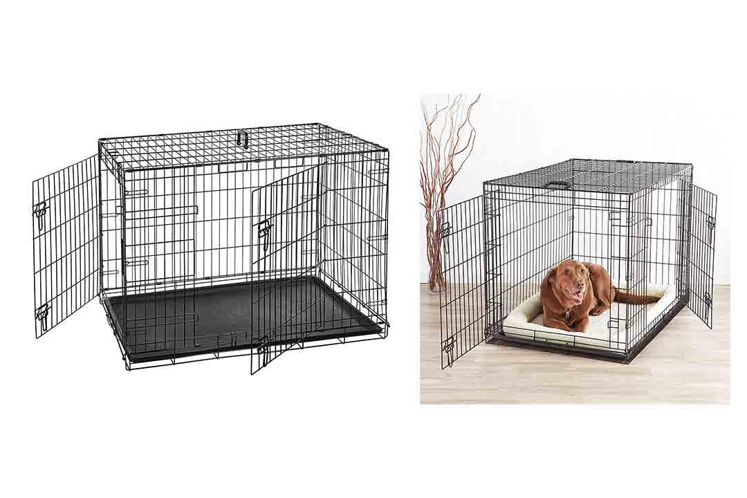 AmazonBasics Single Door & Double Door Folding Metal Dog Crate
