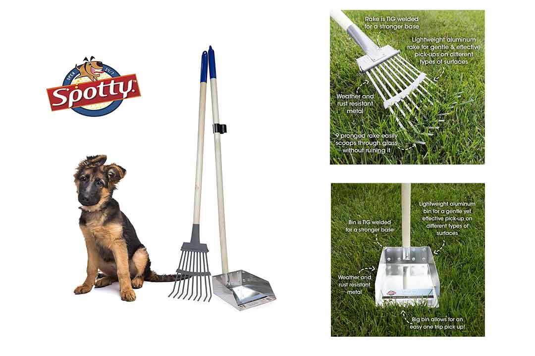 EXPAWLORER Pet Poop Tray and Rake