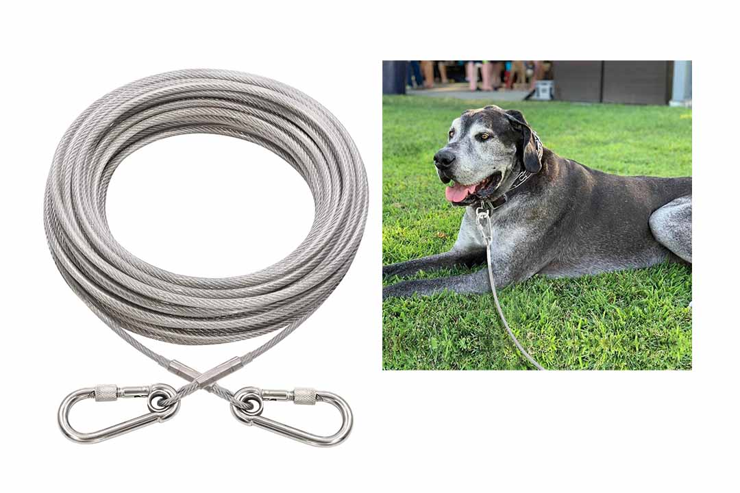 XiaZ Dog Runner Tie Out Cable