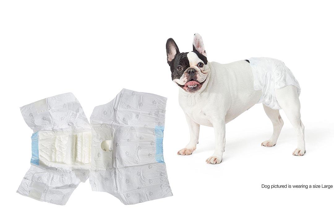 AmazonBasics Disposable Dog Diaper