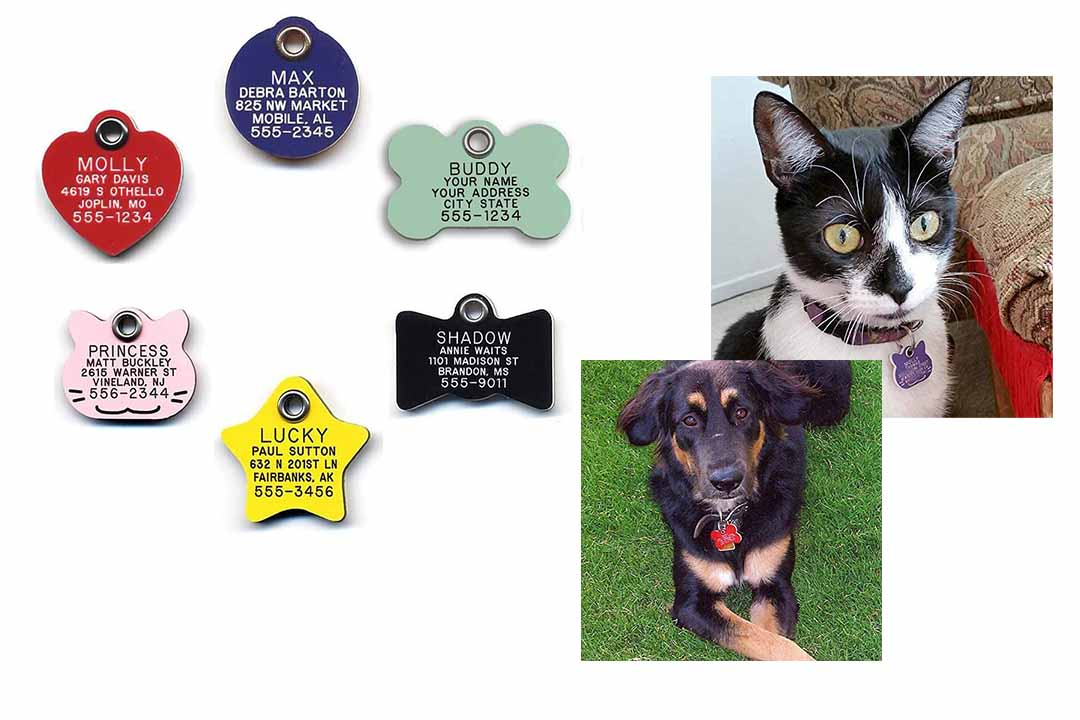 LuckyPet Durable Plastic Pet ID Tag