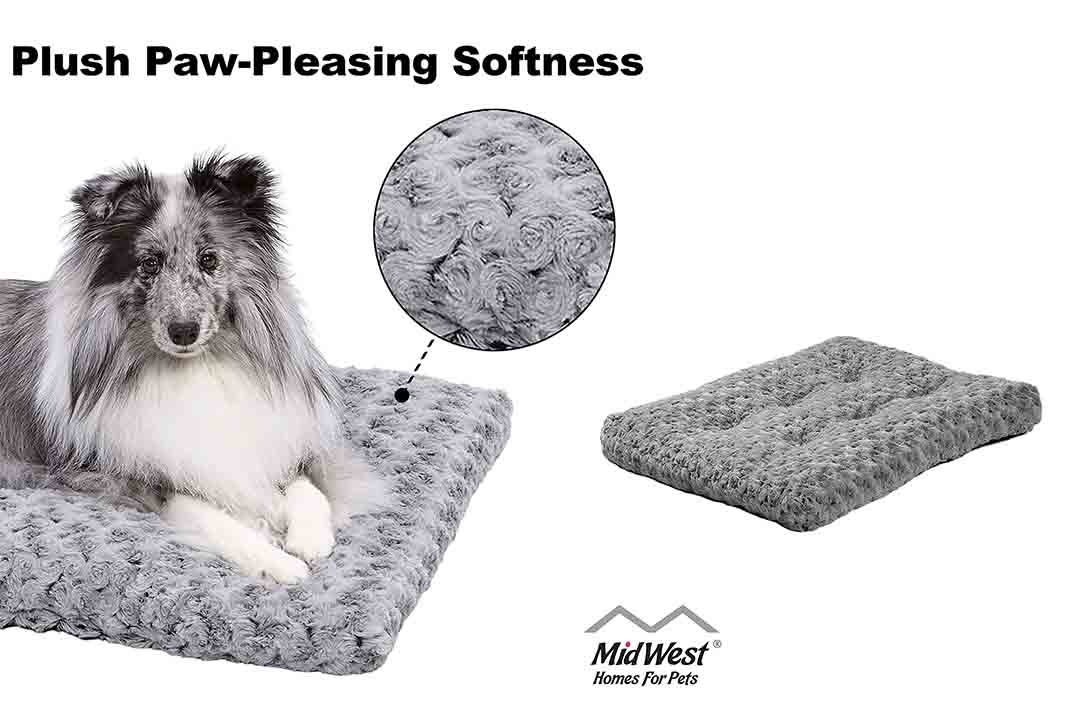 MidWest Homes for Pets Deluxe Pet Bed