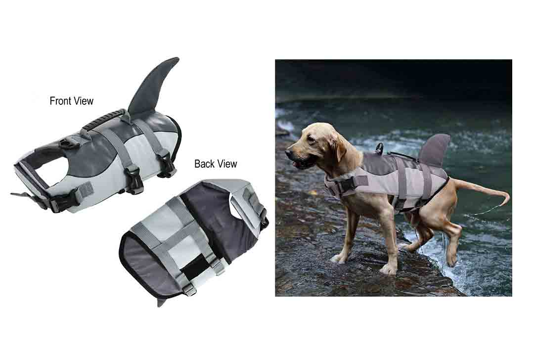 Queenmore Dog Life Jacket