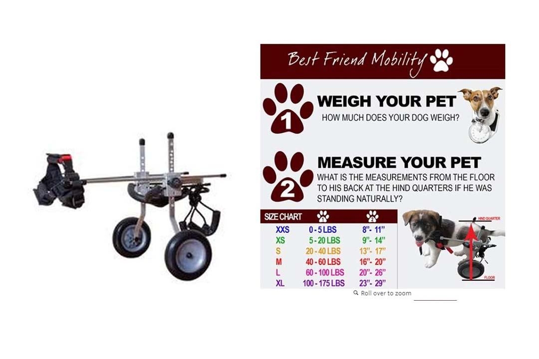 Best Friend Mobility Extra Small Dog Wheelchair