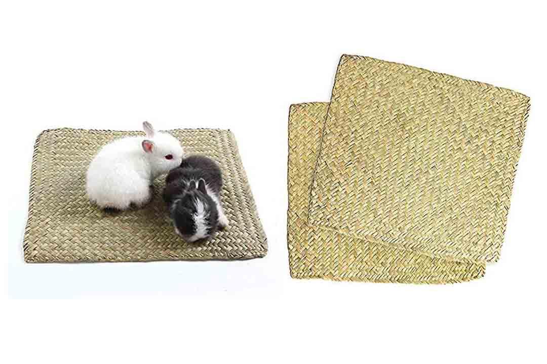 Niteangel 2-Pack of Soft Sea Grass Mats