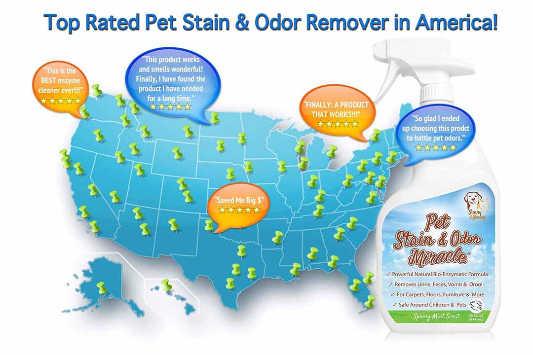 Pet Stain & Odor Miracle - Enzyme Cleaner