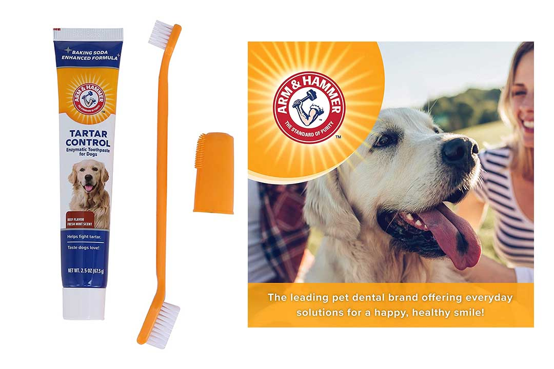Arm & Hammer Dog Dental Care Tartar Control Kit for Dogs