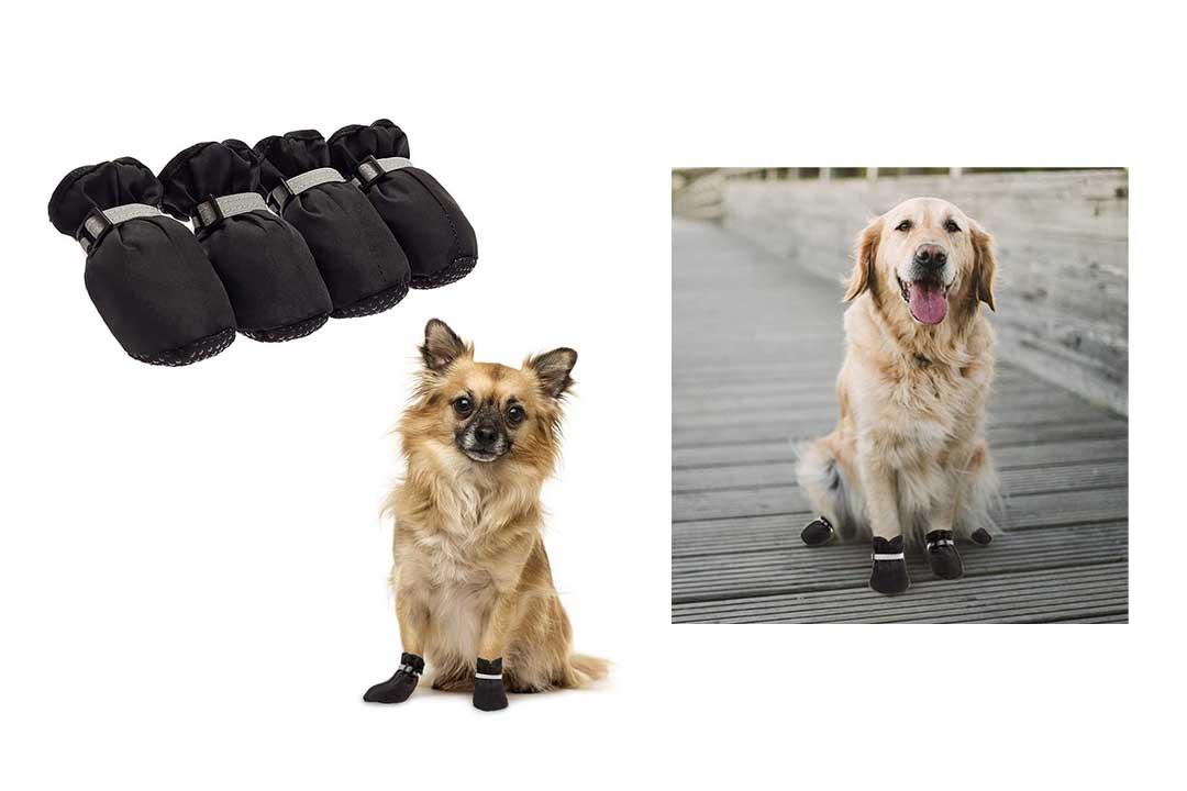 BINGPET Dog Shoes Waterproof Dog Boots