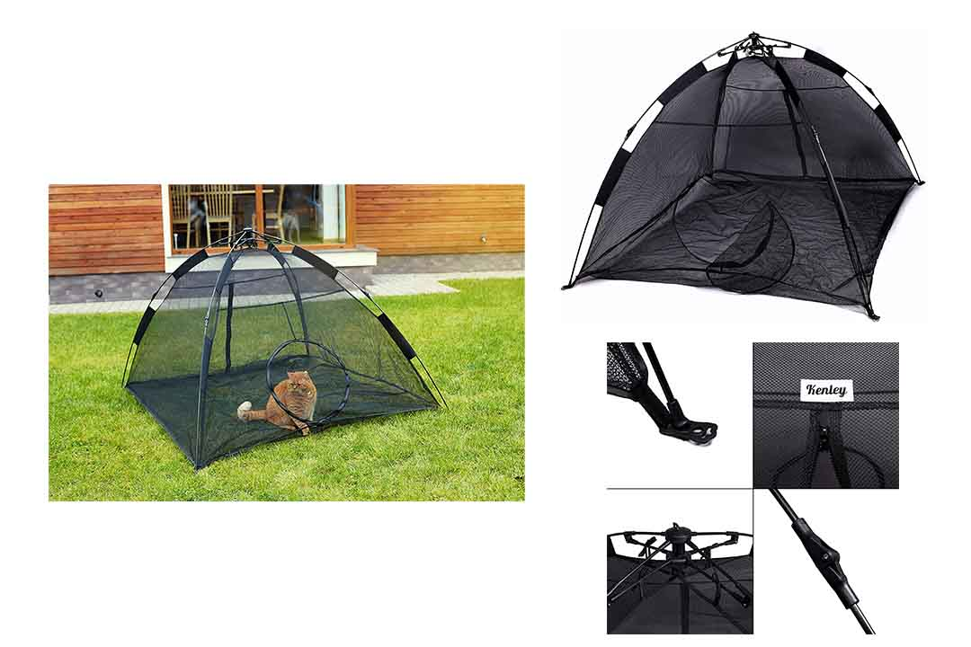 Kenley Cat Outdoor Playpen Tent