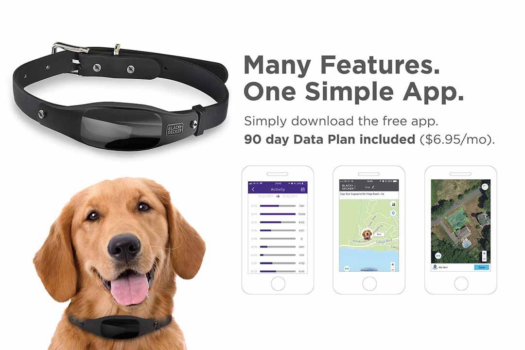 BLACK+DECKER Smart Dog Collar