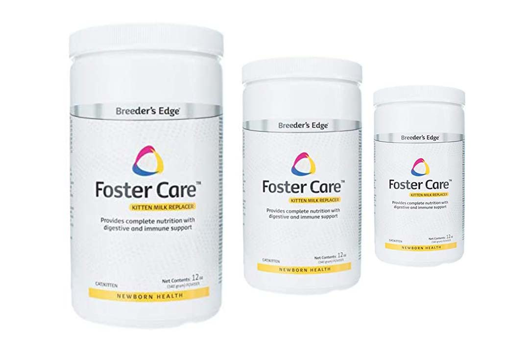 Breeders Edge Foster Care Feline Powdered Milk Replacer