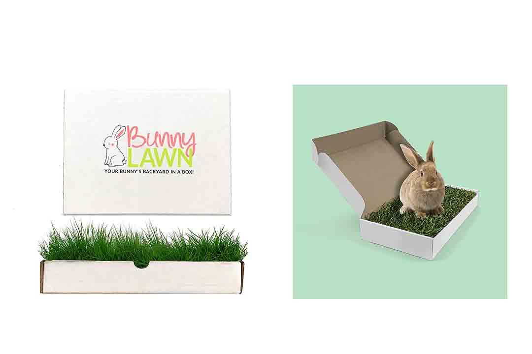 Bunny Lawn Fresh Grass Mat